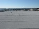 Flat Roof Contractor